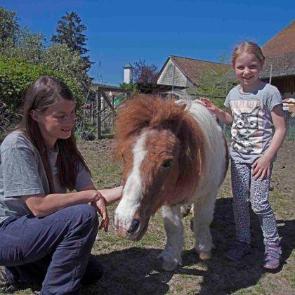 Besuch auf dem Lebenshof Tiermensch für bis zu 10 Personen